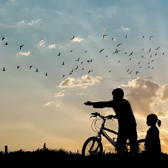 影絵の自転車